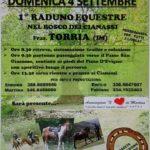 raduno equestre 1