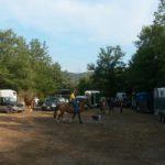 raduno equestre 2