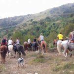 raduno equestre 4