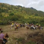raduno equestre 8